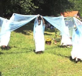 Празник на минералната вода, здравето и дълголетието в село Баня