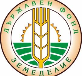 """Правителството отпусна 25 млн. лв. на ДФ """"Земеделие"""" за разходи по проекти на общини"""
