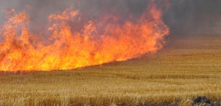 18 пожара в областта за седмица