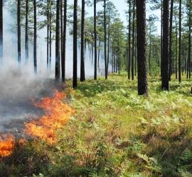 Повишен е рискът от пожари