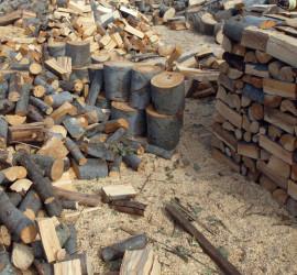 Обсъждат количеството и цената на дървесината, която ще се ползва от общинските горски територии