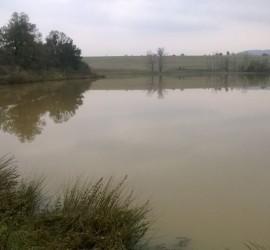 Областната комисия по водноспасителна дейност провери язовири и микроязовири в област Пазарджик