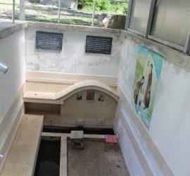 Празник на минералната вода, здравето и плодородието в Баня днес