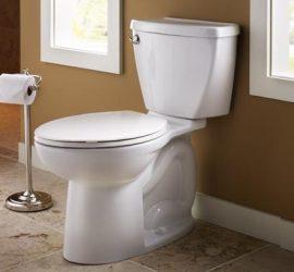 Днес е Световният ден на… тоалетната