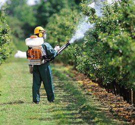 Професионален празник на работещите в областта на растителната защита