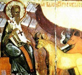 Днес църквата почита Св. Власий Севастийски