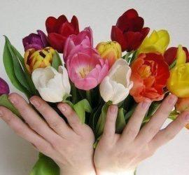 Честит Осми март – Международен ден на жената!