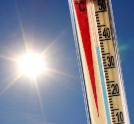 Живакът ще скача до 39 градуса през юли