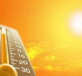 Температури до 39 градусапрез тази  седмица