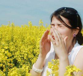 Световен ден за борба с алергиите