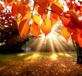 Октомври се очаква да е топъл и сух