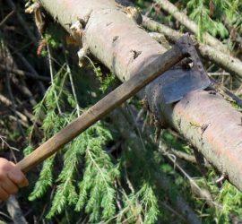 Откриха незаконна иглолистна дървесина в частен имот край Панагюрище