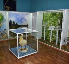 Природонаучният музей отново приема посетители