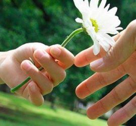 Световен ден на доброто и международен на незрящите