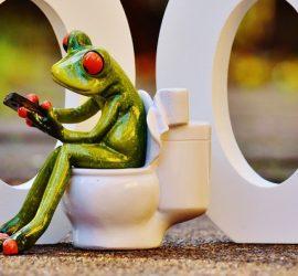 Световен ден на тоалетната