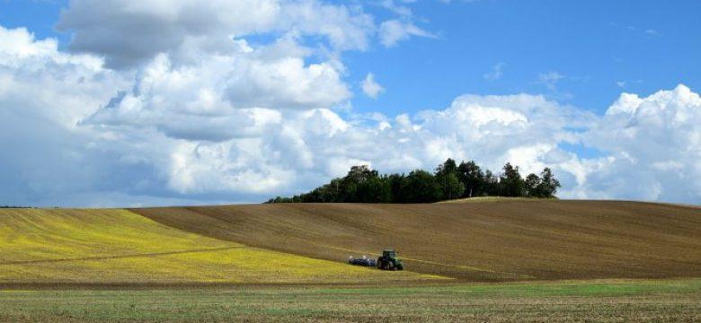 Изтича крайният срок за пререгистрация на земеделските стопани