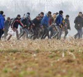 Международен ден на мигранта
