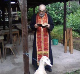 В Бъта дават курбан за здраве на  Голяма Богородица
