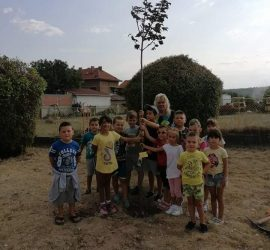 За поредна година  Община Панагюрище дари дръвчета на учебните заведения