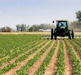 Днес в Панагюрище ще се проведе информационна среща за извънредните мерки за подпомагане на земеделски стопани в условията на COVID