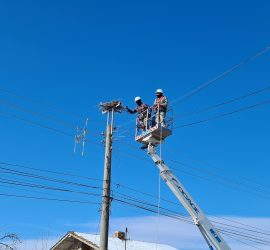 "През 2020 г. ""Електроразпределение Юг"" монтира 174 нови платформи за щъркелови гнезда по стълбове от електроразпределителната мрежа"