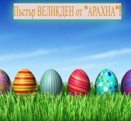 """Пъстър и споделен с най-близките Великден ви пожелава """"АРАХНА""""!"""