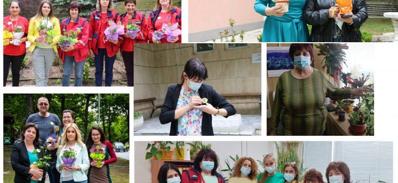 """Служители на """"Асарел-Медет"""" с фирмена кампания показаха съпричастност към каузата за опазване на природата и пчелите"""